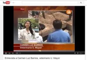 """Entrevista en Canal 13, """"Día Mundial de los Animales"""""""