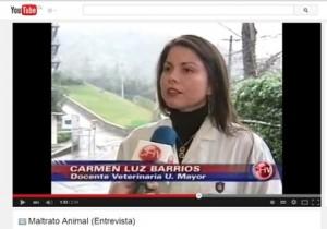 """Entrevista a Carmen Luz Barrios: """"Maltrato Animal"""""""