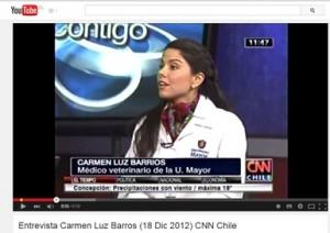 "Entrevista CNN Chile, ""Mascotas como regalo de Navidad"""
